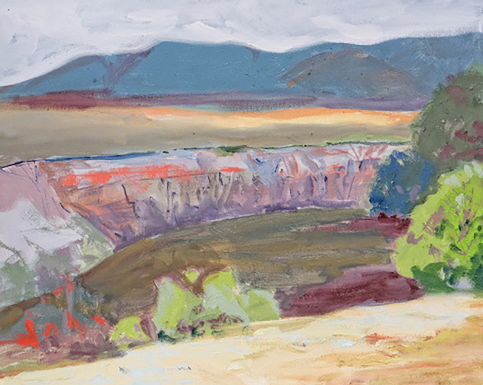 "GORGE NEAR TAOS - oil, 20"" x 16"", $600"